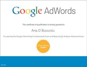 Certificare Raportare si Analiza Google Adwords