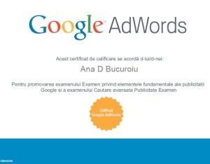 Certificare Google Adwords seach